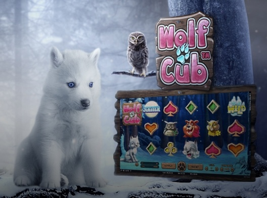 Kasyno Betsson: Do 100 free spinów na slot Wolf Cub